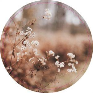 Dry-Leaves-30cm.jpg