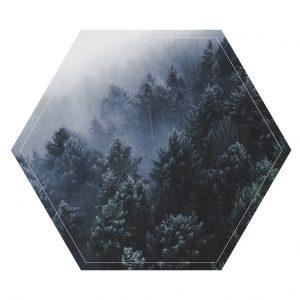 l-hexagon-2.jpg