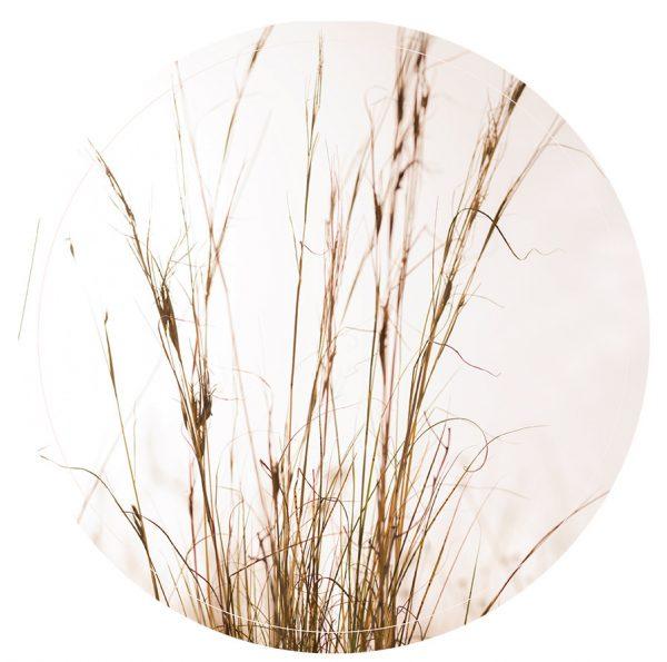lag-Gras2-30cm-(1).jpg