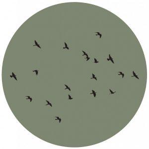 lage-res-birds-groencm.jpg