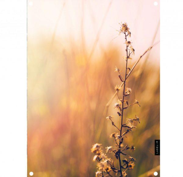 lr-nature-tuinposter-.jpg