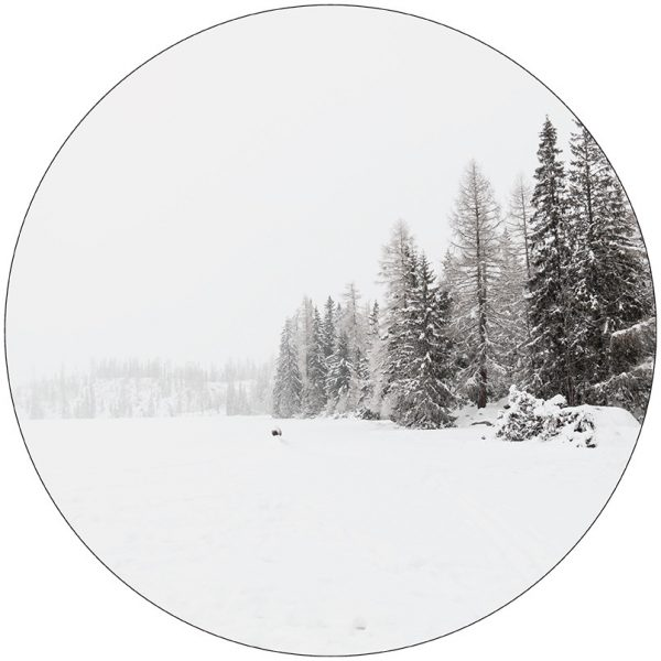 sneeuw-28cm.jpg