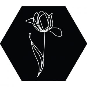 tlulp-1lijn-zwart-hexagon.jpg