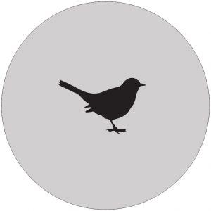 vogel-muurcirkel-muisgrijs.jpg