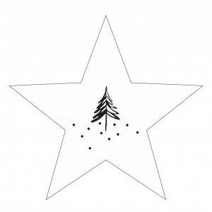 lr-denneboom-ster--wit-30cm.jpg