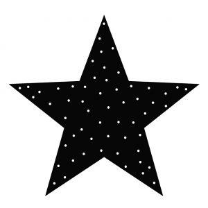 lr--ster--ster-stip-zwart-30cm.jpg