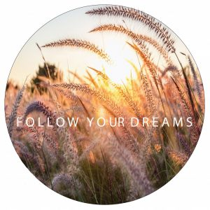follow-your-dreams--40cm.jpg