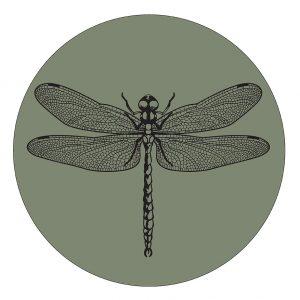 libelle-30cm-groen,.jpg