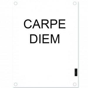 tuinposter-carpe-diem-wit.jpg