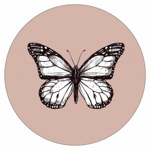 vlinder-rose--30cm.jpg